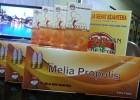 Distributor Melia Propolis Kendari