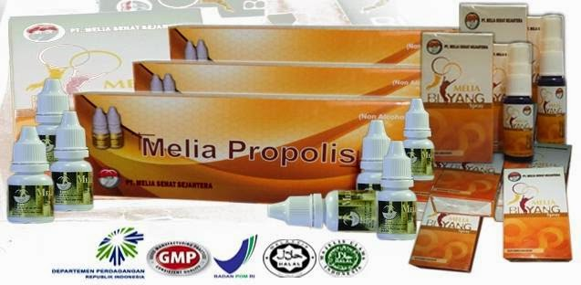 Distributor-Agen-Resmi-Jual-Melia-Propolis-Melia-Biyang-Cipayung-Jaktim